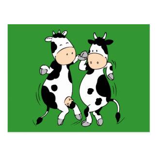 Dancing Cows (mooviestars) Postcard