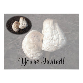 Dancing Mushrooms Duo 17 Cm X 22 Cm Invitation Card