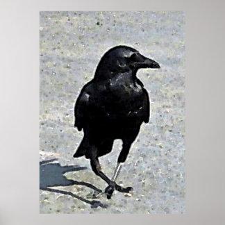 Dancing The Crow Jig Poster