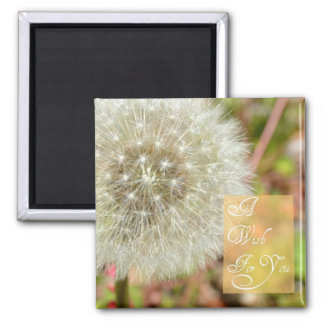 Dandelion- A Wish for You Magnet