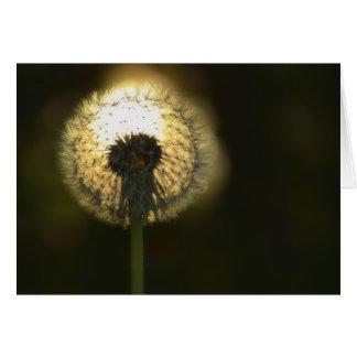 Dandelion Bulb Card