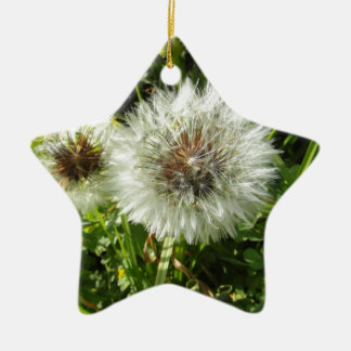 Dandelion Ceramic Ornament