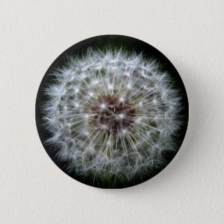 Dandelion Clock badge/button 6 Cm Round Badge