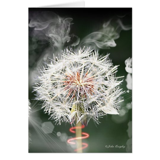 Dandelion Clock Card
