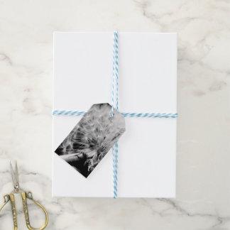 Dandelion Clock Gift Tag