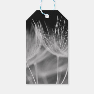 Dandelion Closeup in Black White Gift Tags