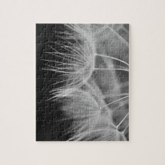 Dandelion Closeup in Black White Jigsaw Puzzle