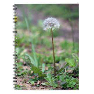 Dandelion cover notebook