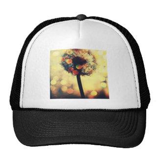 dandelion dreams trucker hats
