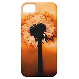 Dandelion Flower (Tooth of Leon) Case For The iPhone 5