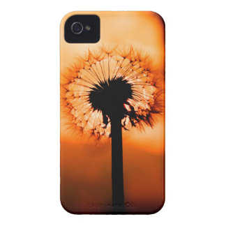 Dandelion Flower (Tooth of Leon) Case-Mate iPhone 4 Case