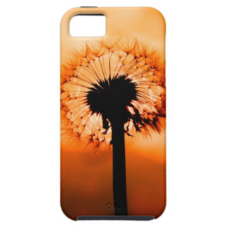 Dandelion Flower (Tooth of Leon) iPhone 5 Cover