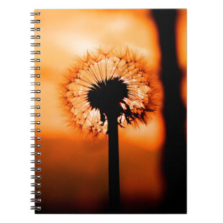 Dandelion Flower (Tooth of Leon) Notebook