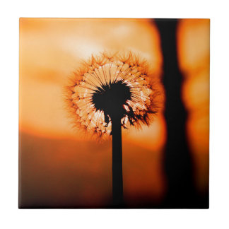 Dandelion Flower (Tooth of Leon) Small Square Tile