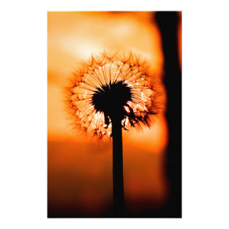 Dandelion Flower (Tooth of Leon) Stationery