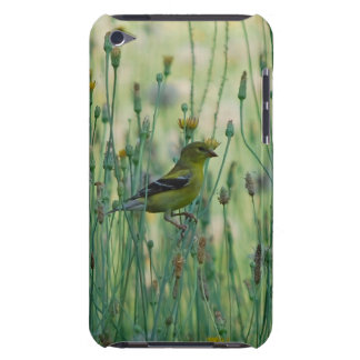 Dandelion Goldfinch Barely There iPod Cases