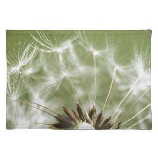 Dandelion Head Placemats
