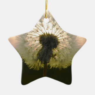 dandelion in the sun ceramic ornament