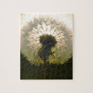 dandelion in the sun jigsaw puzzle