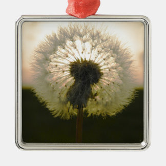 dandelion in the sun metal ornament