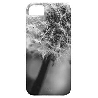 Dandelion Monochrome Case For The iPhone 5
