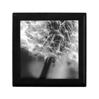 Dandelion Monochrome Gift Box
