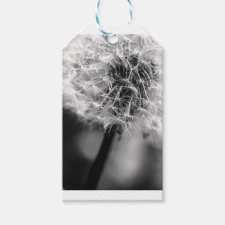 Dandelion Monochrome Gift Tags