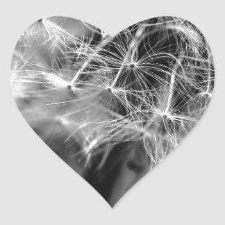 Dandelion Monochrome Heart Sticker