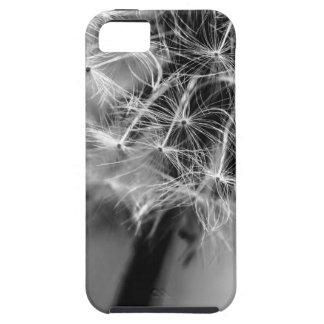 Dandelion Monochrome iPhone 5 Covers