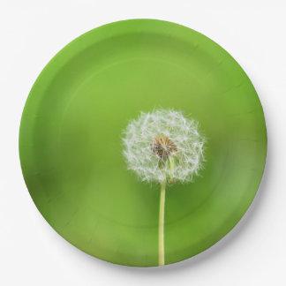 Dandelion Paper Plate