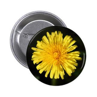 Dandelion Pinback Buttons