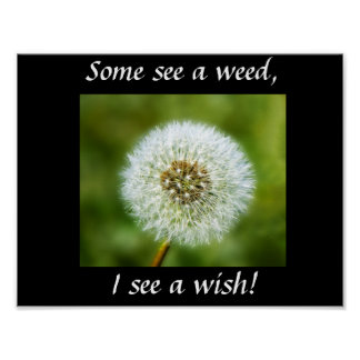 Dandelion Poster - Some see a weed, I see a wish!