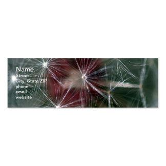 Dandelion Seed Head Pack Of Skinny Business Cards