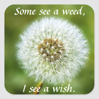 Dandelion Sticker - Some See a Weed I see a wish