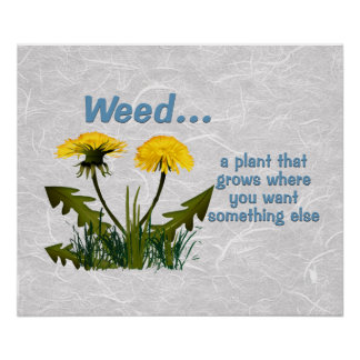 Dandelion Weed Quote Posters