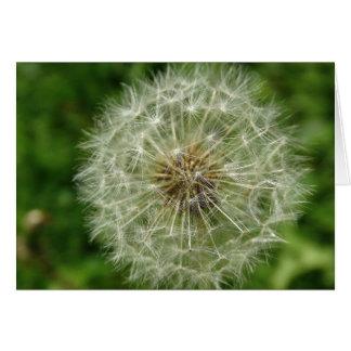 Dandelion Wishes green Art Print Card