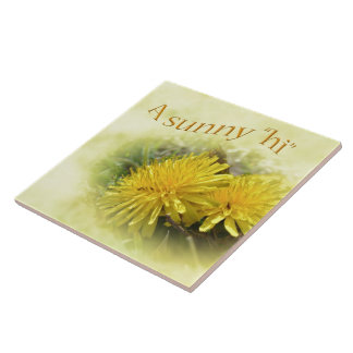 Dandelions - A Sunny Hi Large Square Tile