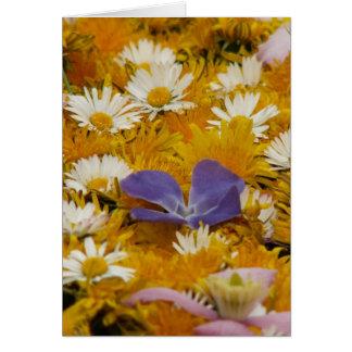 dandelions etc card