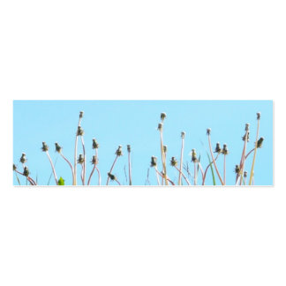 Dandelions in the sun bookmark pack of skinny business cards
