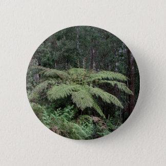 Dandenong Ranges Rainforest, Victoria, Australia 2 6 Cm Round Badge