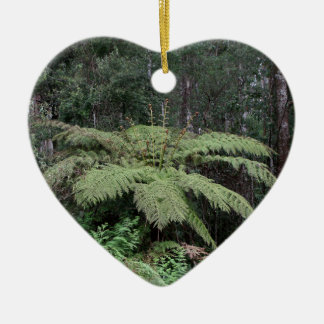 Dandenong Ranges Rainforest, Victoria, Australia 2 Ceramic Ornament