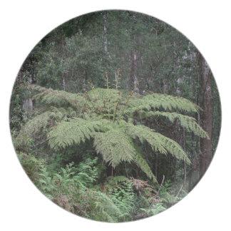 Dandenong Ranges Rainforest, Victoria, Australia 2 Dinner Plates