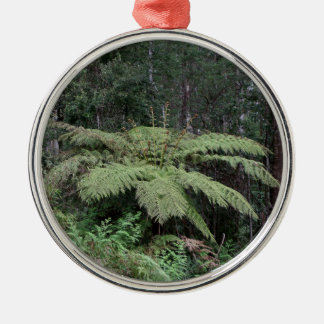 Dandenong Ranges Rainforest, Victoria, Australia 2 Metal Ornament