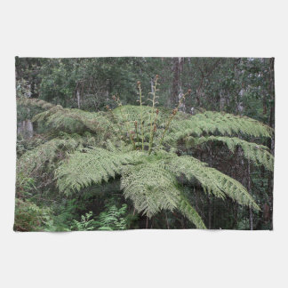 Dandenong Ranges Rainforest, Victoria, Australia 2 Towel