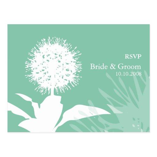 Dandi Colour: Dew Drop Post Cards
