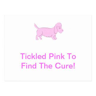 Dandie Dinmont Pink Dog Postcard