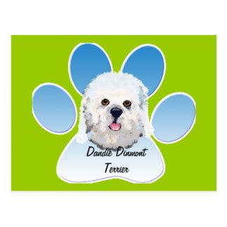 Dandie Dinmont Terrier - Face Portrait Postcard