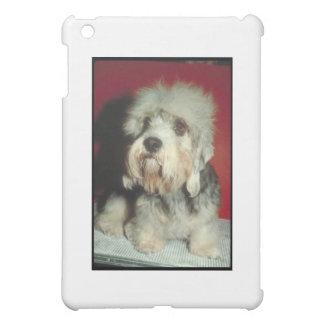 Dandie Dinmont Terrier iPad Mini Case