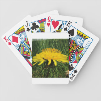 Dandilion Bicycle Playing Cards