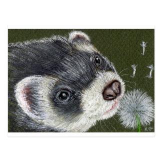 Dandy Ferret Postcard